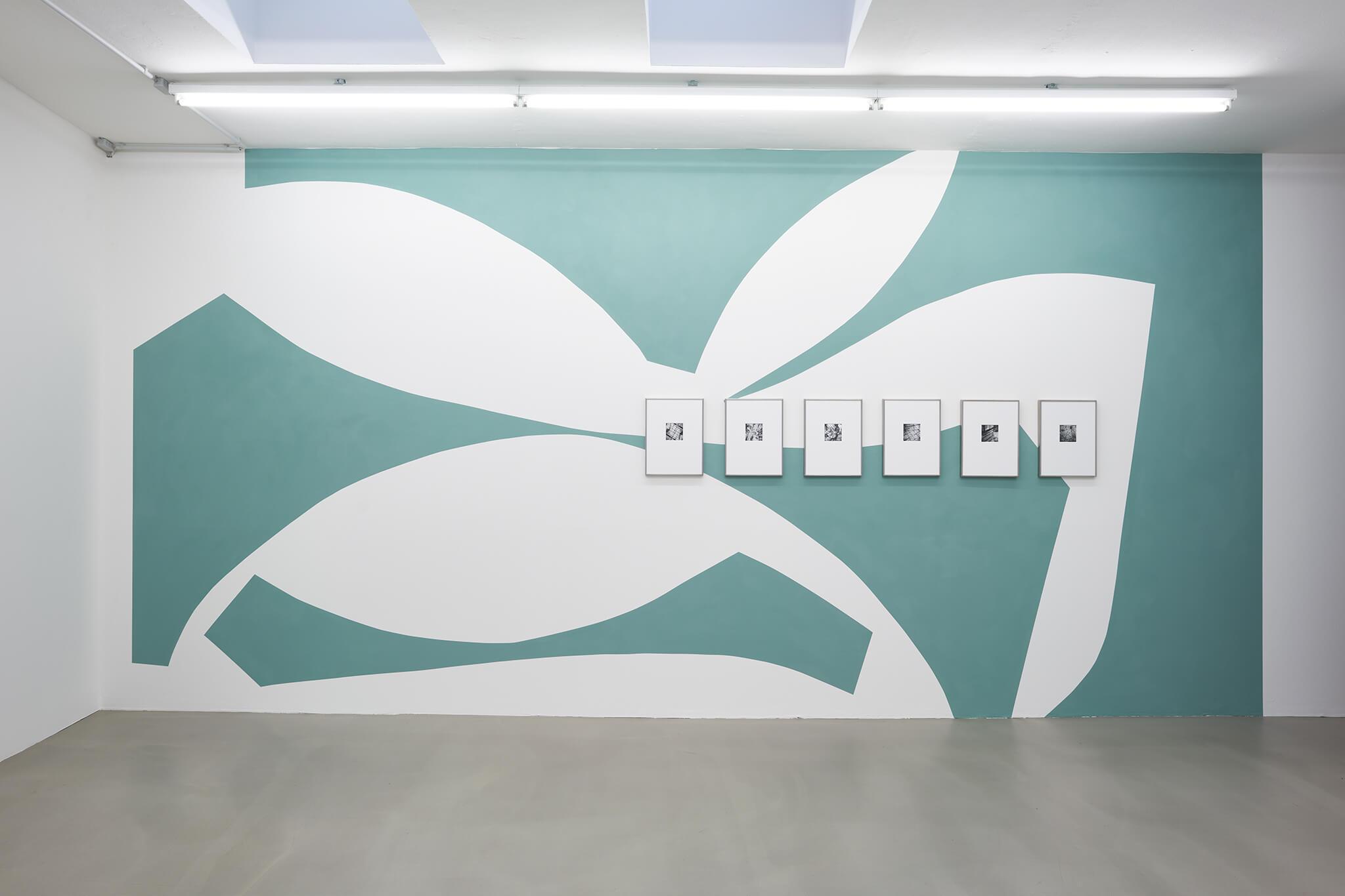 110_Frauke-Dannert_Collage_Ausstellung_Wandmalerei_botanicals_Rupert-Pfab-Düsseldorf_-2017